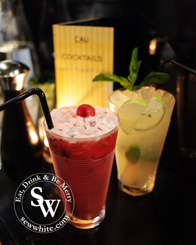 Cocktails with raspberry and apple