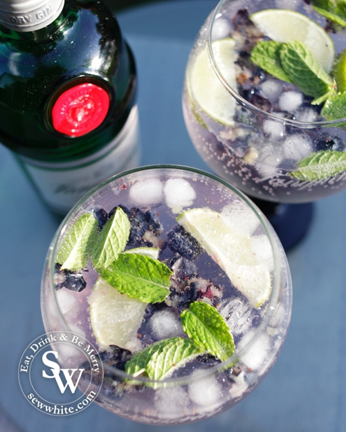 Blueberry Gin and Tonic Recipe from above with pruple and green tones
