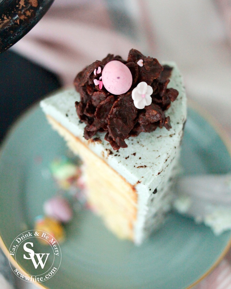 Speckled Easter Pinata Cake slice. A beautiful slice of duck egg blue speckled cake perfect for Easter. Topped with a chocolate easter nest.