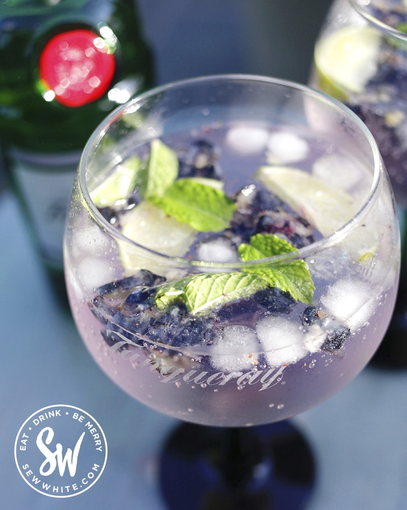 a close up of a gin glass with blueberries and mint