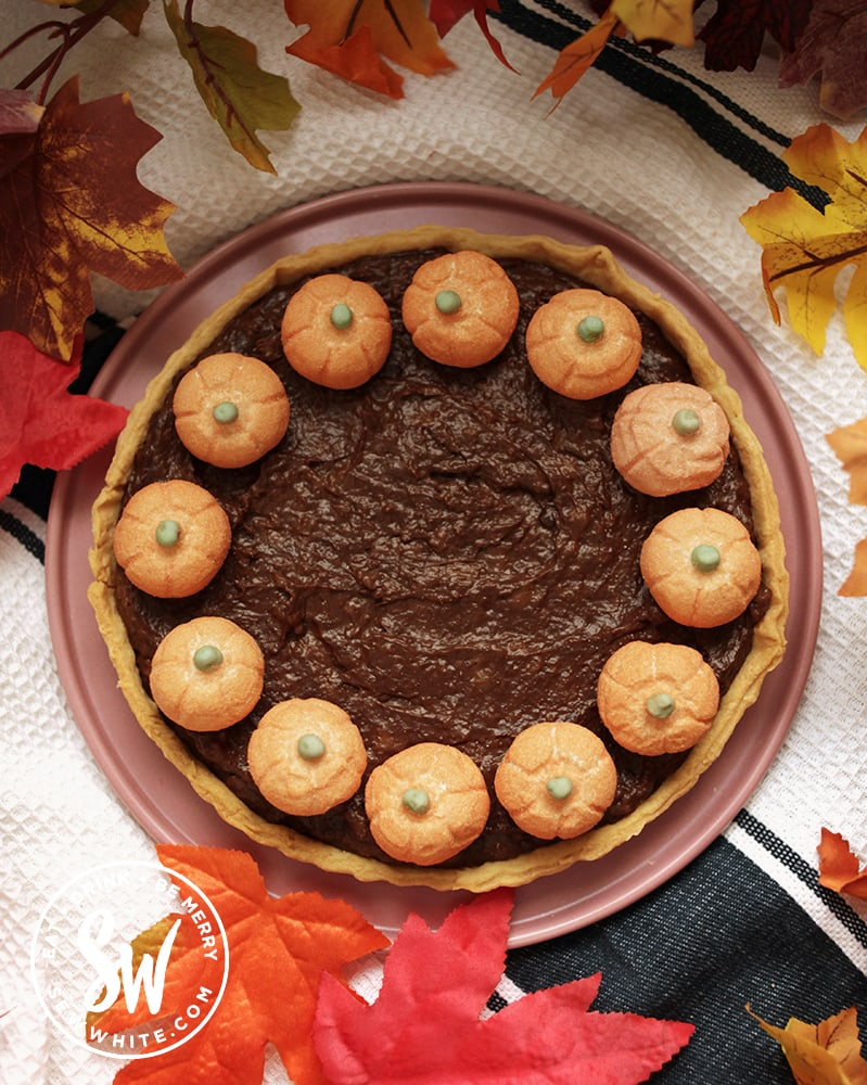 chocolate pumpkin tart on a pink plate and white background.